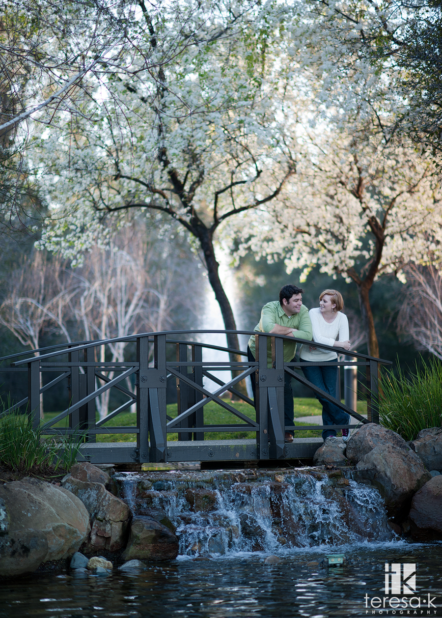 engagement session with spring tress in bloom on Folsom California by Folsom wedding photographer, Teresa K photography