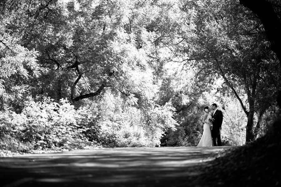 Sacramento Wedding Photographers Best of Review 119