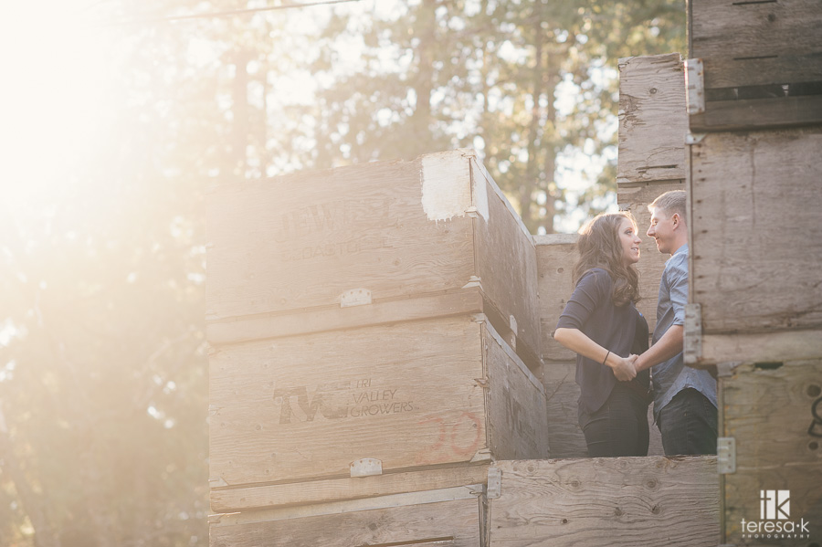 apple hill engagement photo